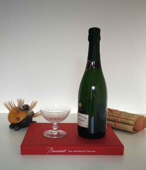 Coupe a champagne cristal baccarat ancienne