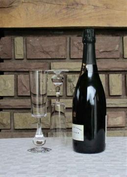 Flute jose cristal de baccarat occasion